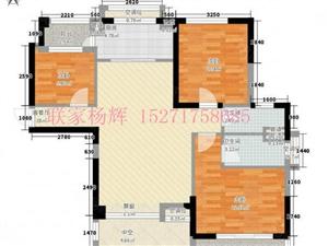 碧桂园精装房出售,中间楼层只要65万