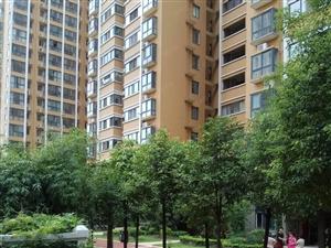新市政府儒林商都精装公寓边户55平管更名