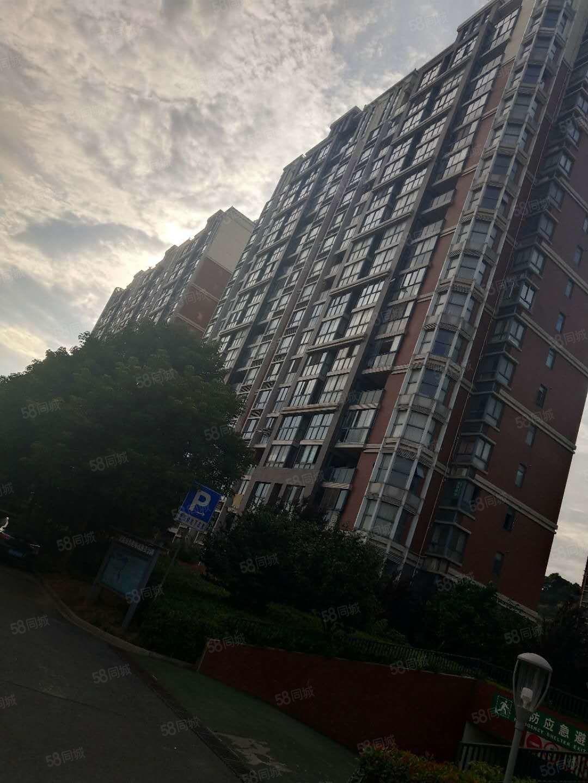 金新城首府空关大毛坯房东置换惜售价格可谈