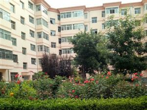 广成花园B区两室两厅2楼框架结构户型采光好可按揭