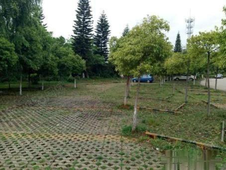 独体别墅、只卖260万!熙竹苑带100平米花园、精装!
