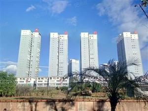 楚雄彝海公园旁珑曦苑7楼小高层137平四室两厅两卫仅售45万