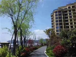 绿城云澜庭,精装交付的海景房,户型多,房源有限,欲购从速