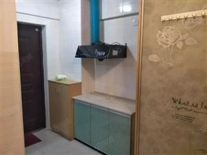 天润天城精装公寓现1000/月