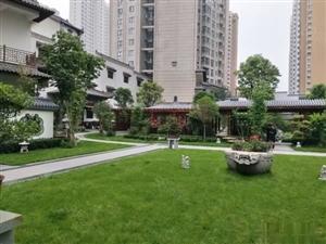 新市政府西五证全儒林商都文化苑3室两厅采光好可更名公积金