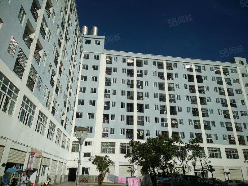 敏通4136金色年华单身公寓37平米两证齐全上税低