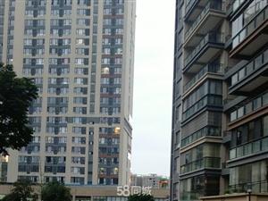 麒龙国际电梯3室2厅1卫