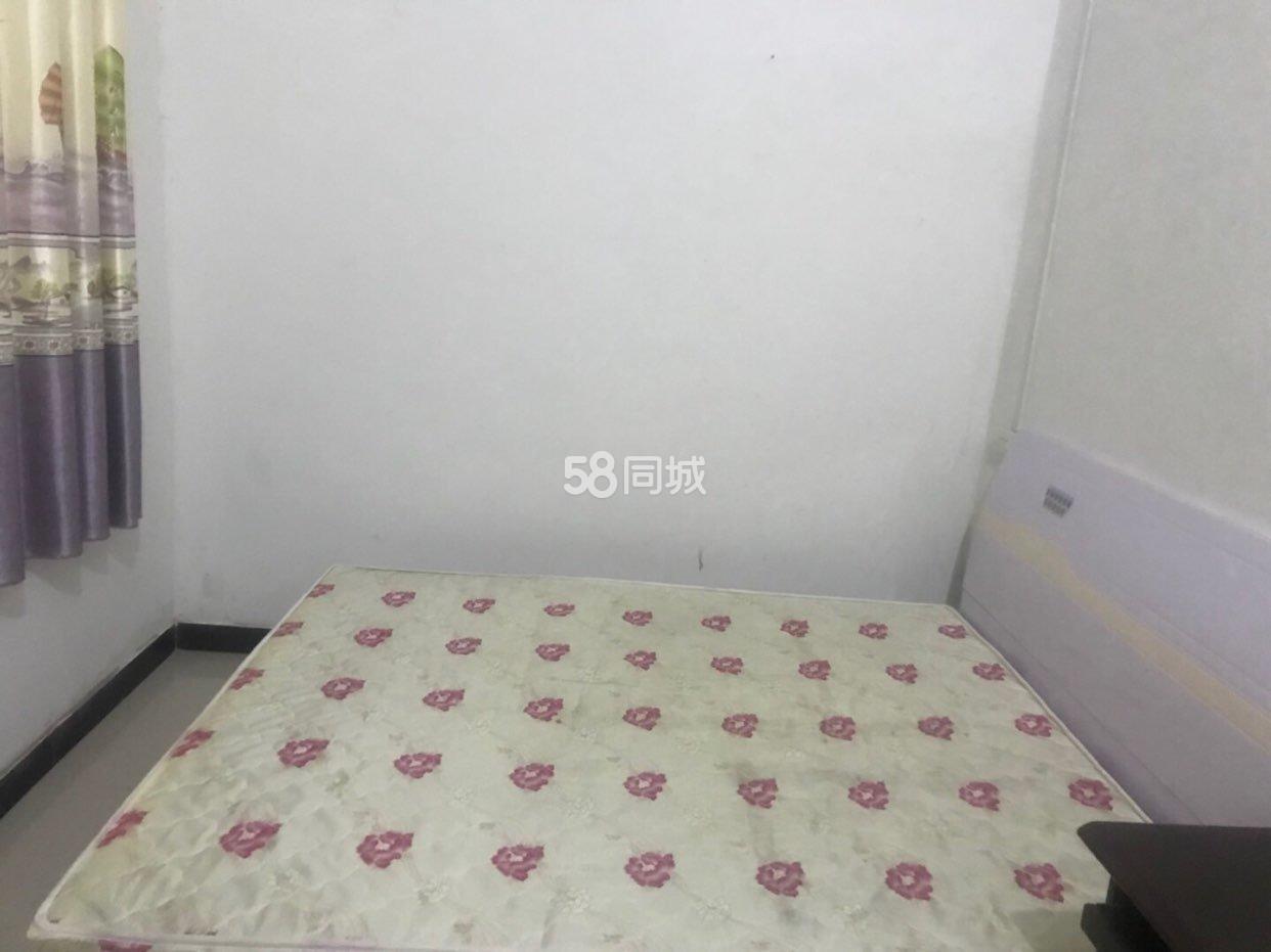 淅川钟观小学2室1厅1卫
