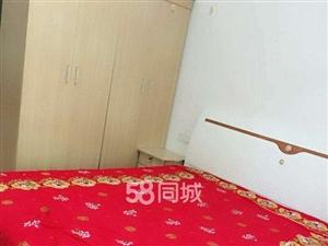 阳光公寓1室1厅1卫