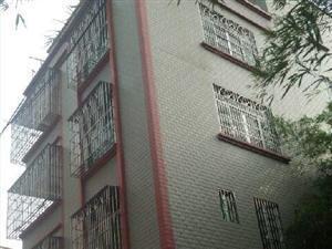 化州南盛中心小学旁整幢出售2室2厅1卫