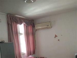 新阳光安居小区1室1厅1卫