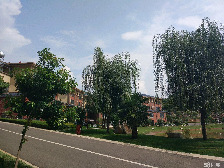 澳门网上投注平台县中枢镇警鑫苑出售一套小区房