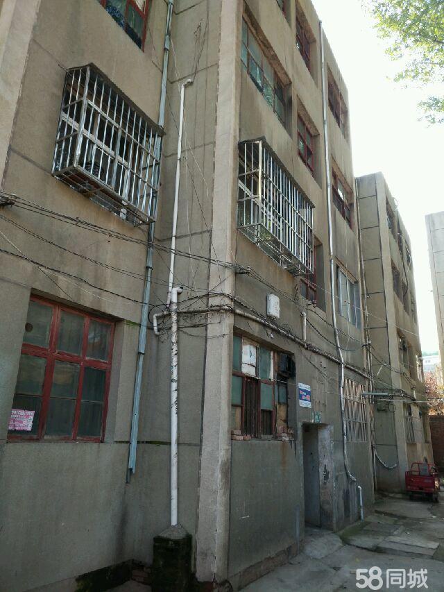 汝阳县二小家属楼3室1厅1卫