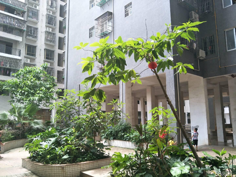 值得买的电梯花园小区 实用三房