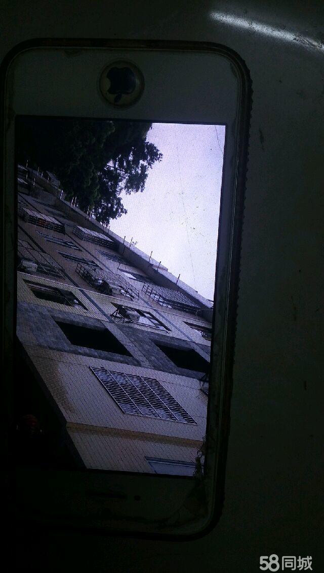 巴马农贸市场旁公安局后面新建私人楼房五层9室1厅9卫