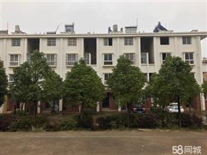 龙凤庄园C-63幢小别墅一户204平方售