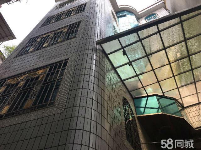 南际民房整栋出售9室5厅5卫420