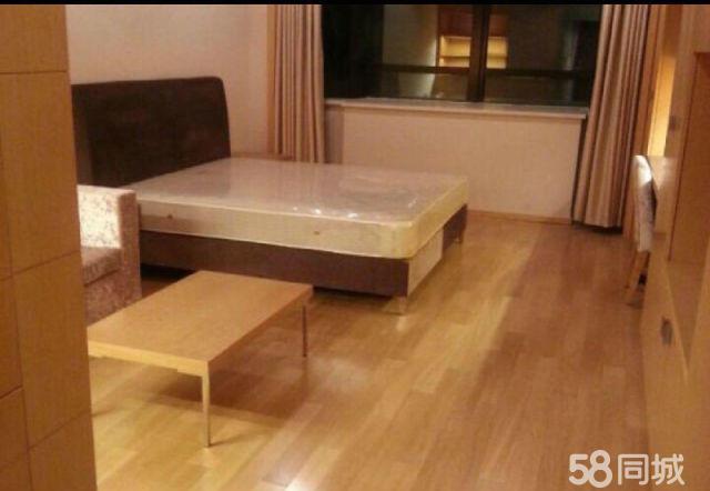 西新桥新城首fu1室1厅55平米精装修押一付三