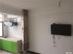 发达公寓1室30平米精装修厨卫齐全押一付一