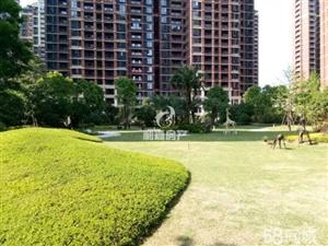 房东含泪出售【高端花园社区】108+28泰禾红树林超值复式楼