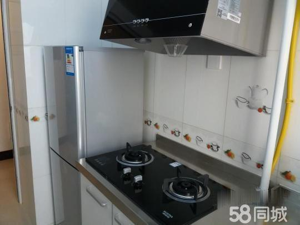 龙腾路电梯精装单身公寓仅租1500