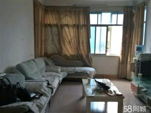 二�D�P5室1�d1�l