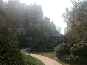 保利海上五月花三期紫薇园!房屋精装!环境优美!就卖年前!急卖