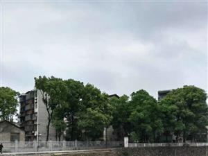0纸厂宿舍靠近五中近63平方二室1厅二楼,简装带电10.8万