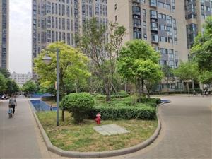 有证可贷荣邦花园136平4室2厅2卫现房有证可贷款送入室花园