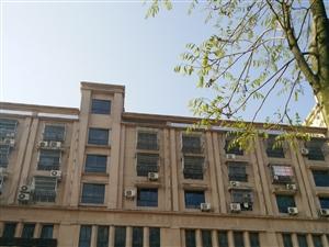 18385欧贝沙单身公寓45平米设施全