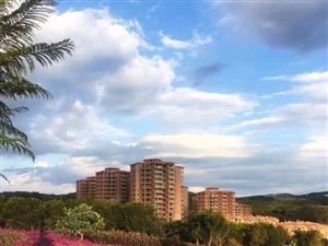 准现房!70年产豪华装修湖景公寓尽在抚仙湖欢乐大世界