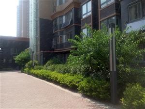 光明西路十五中西校名仕绿茵苑高1楼2室2厅120平方米精装