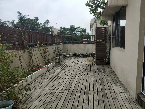 香港东路沿街连体别墅前后带院有钥匙看海景可会所办公茶楼