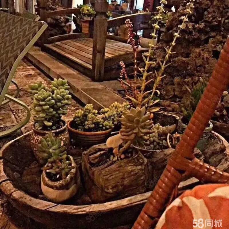 丽江.大研里!独栋客栈拥有世界文化遗产保护区内会赚钱的产权房