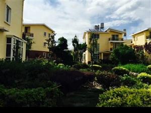 德龙附近竹林花园别墅出售