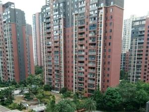 新区荟萃中央高档小区环境优美32楼的22楼