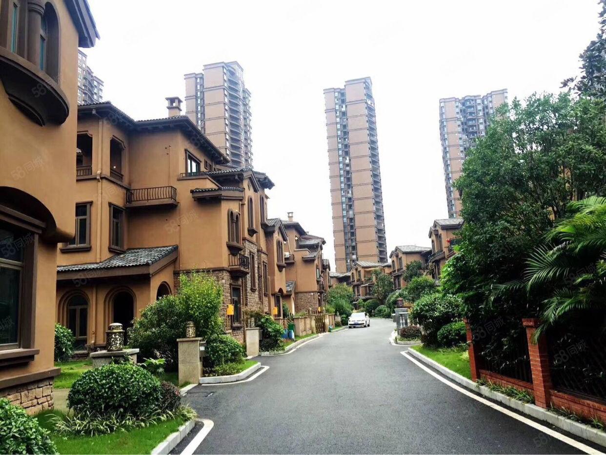 碧桂園雙拼別墅100平方花園證上235平方滿2年現房