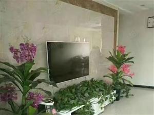 帝苑别墅05年的房一梯两户免税支持按揭贷款