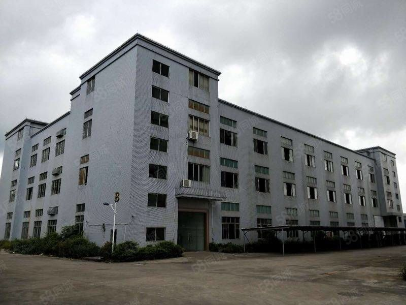 阳东十八子附近厂房招租,可以分租厂房、仓库火热招租中