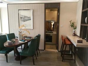 新城区两室两厅环境优美可按揭房价便宜