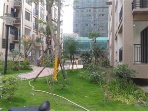 凯悦广场单身公寓出售