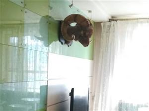 润泽园多层二楼110平米三室两厅中等装修南北通透xue区房