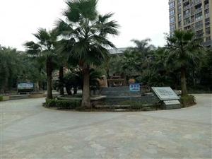 华建新村别墅,毛坯,产权525平,使用620平,只售380万