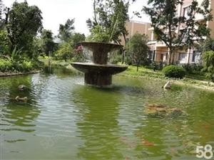 红惠园别墅带50平的私家花园园林式小区