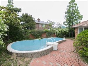 绅园独栋别墅带泳池四周大院环绕办公会所都可