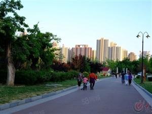 安侨东城国际,11楼二室二厅110平方,精装,空调,热水器,