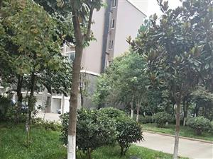 宝靖花园1楼住房出售精装带车库
