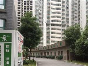 中景门国贸新建电梯房五证齐已网签23楼无遮挡板式