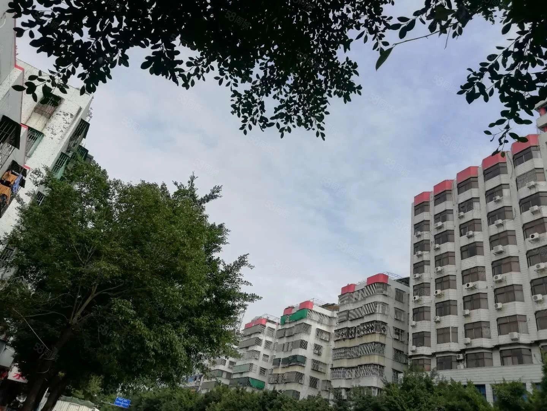 韩滨园小区4楼3房2厅出租