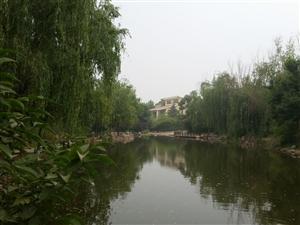 开元路兰亭山庄前后花园临湖双拼别墅长期出租设计公司优先